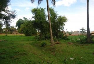 Development Land in Siem Reap??? - Wat Chourk