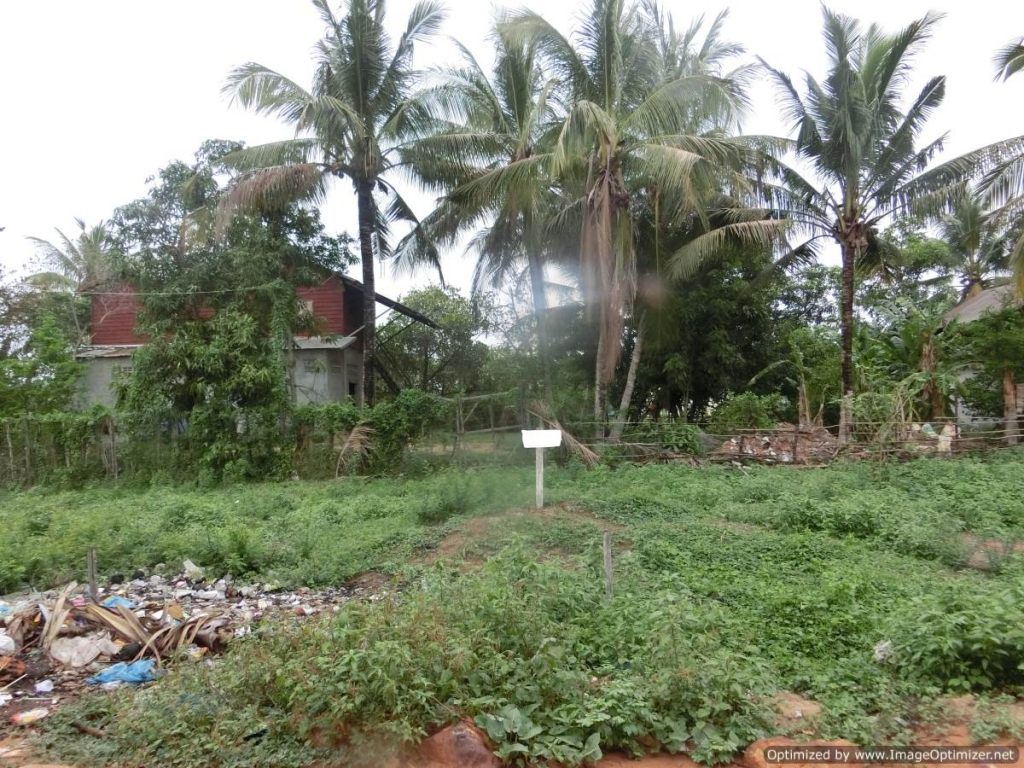 Land for Sale in Siem Reap - Wat Damnak