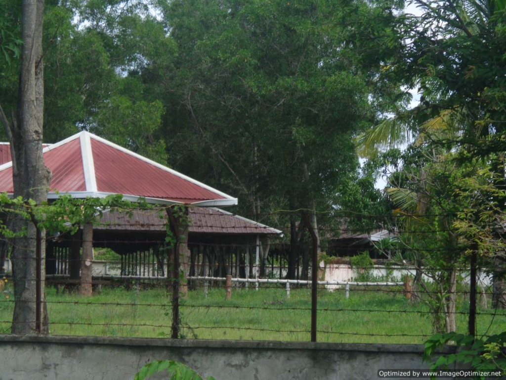 3.7 hectares Development Land in Dangkao for sale