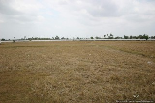 Land in Ang Snoul - 85,000 Sqm