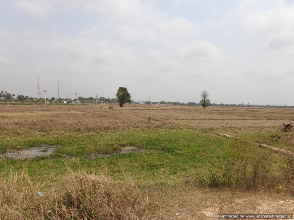 Land for sale in Dangkao - 15,000 Sqm