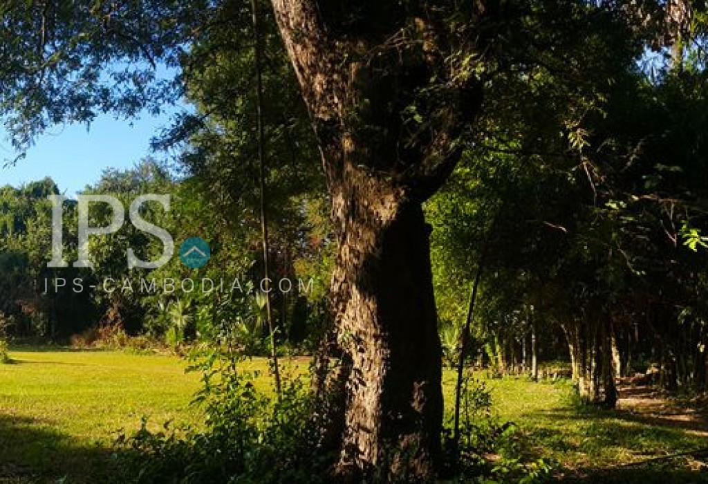Land For Sale - Beautiful large land with garden