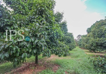 Agricultural Land for Sale - Sangkat 4, Sihanoukville