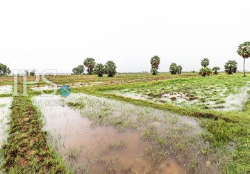 40,000 Sqm Land For Sale - Kampot Province