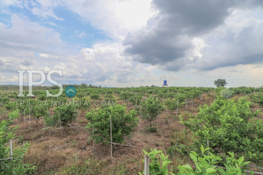150,000sqm Land For Sale - Sihanoukville