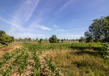 11,600 sq.m Land For Sale - Kandal, Other Areas