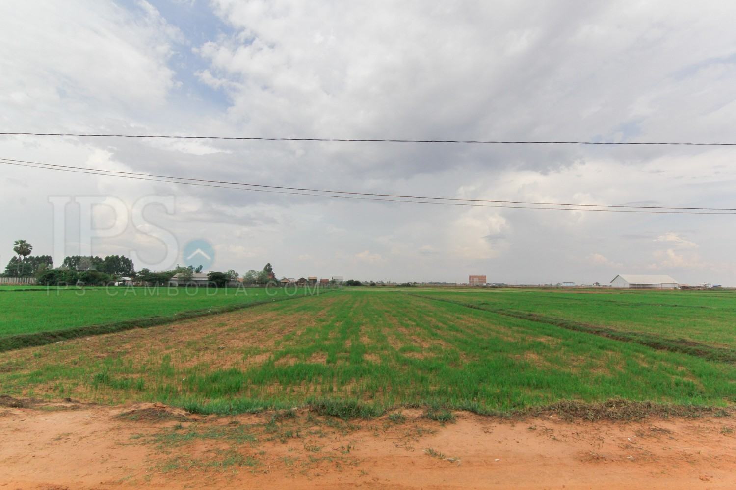 Low price for quick sale - 1,977 Land For Sale - Chreav, Siem Reap