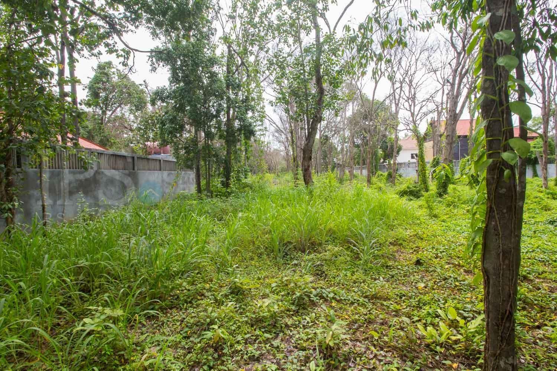 12,600 sq.m. Land For Sale - Slor Kram, Siem Reap