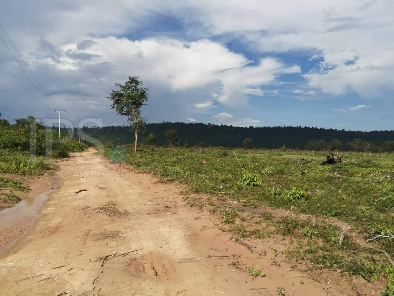 10 Hectares Land For Sale - Banteay Srei, Siem Reap