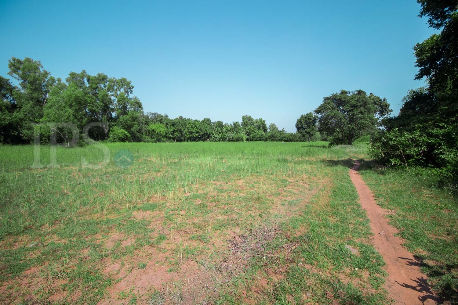 11,468 Sqm Land For Sale - Nokor Thum, Siem Reap