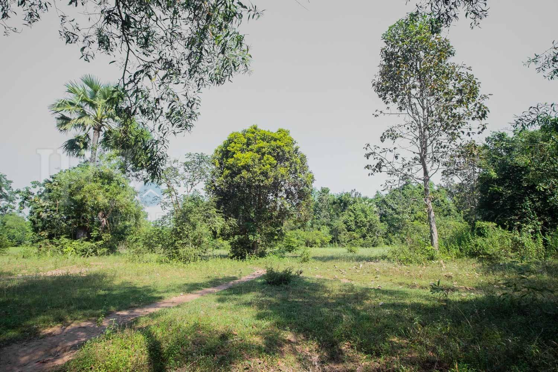 11,468 Sqm Land For Sale - Nokor Thum, Siem Reap