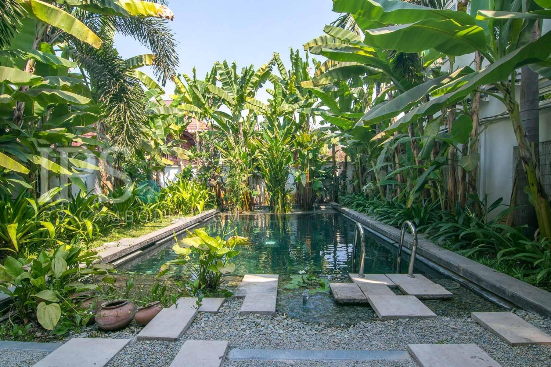 6 Bedroom Villa For Rent - Wat Damnak, Siem Reap