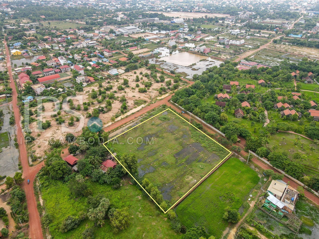 7980 Sqm  Land  For Sale - Svay Dangkum, Siem Reap