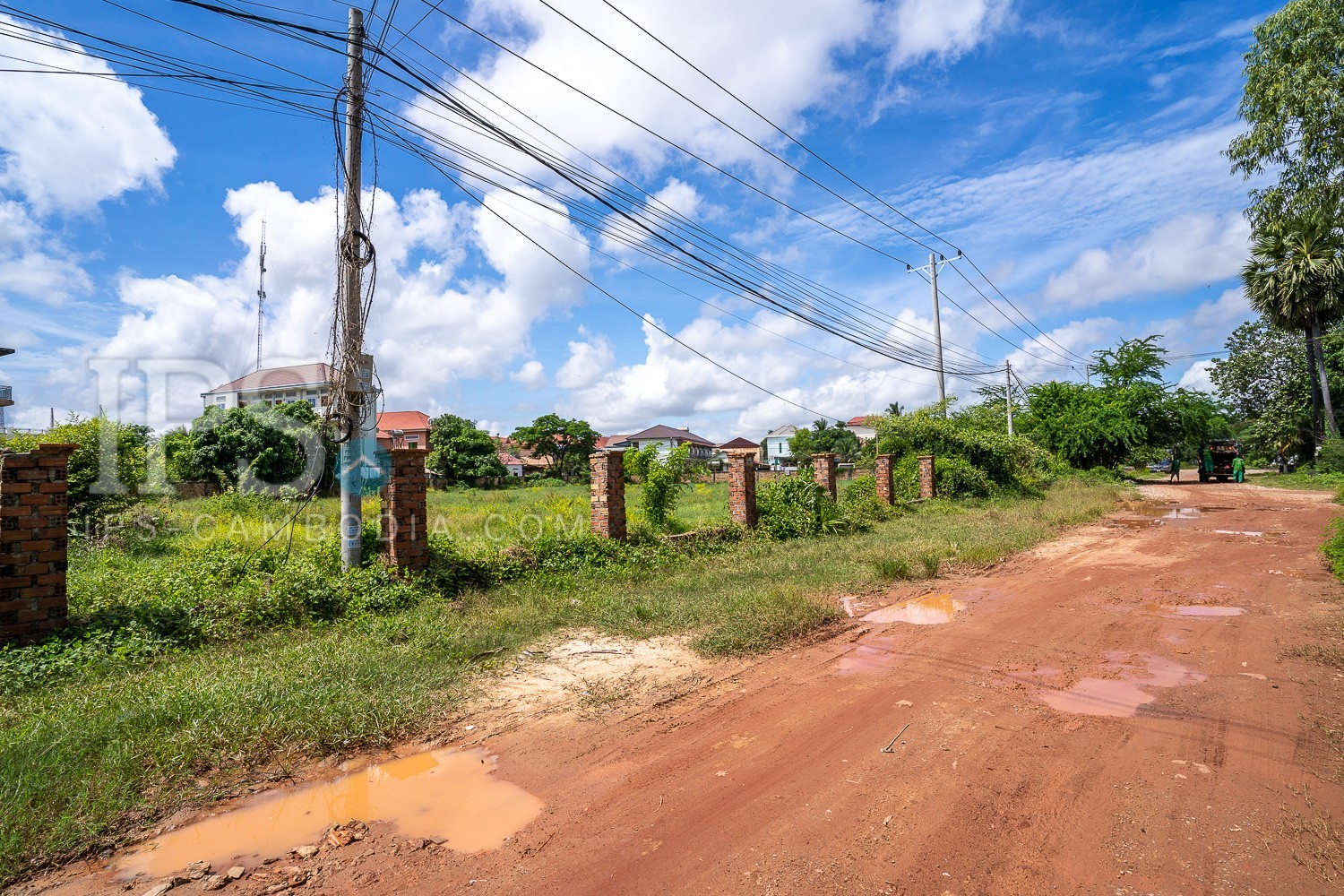 6000 Sqm Land For Sale - Svay Dangkum, Siem Reap