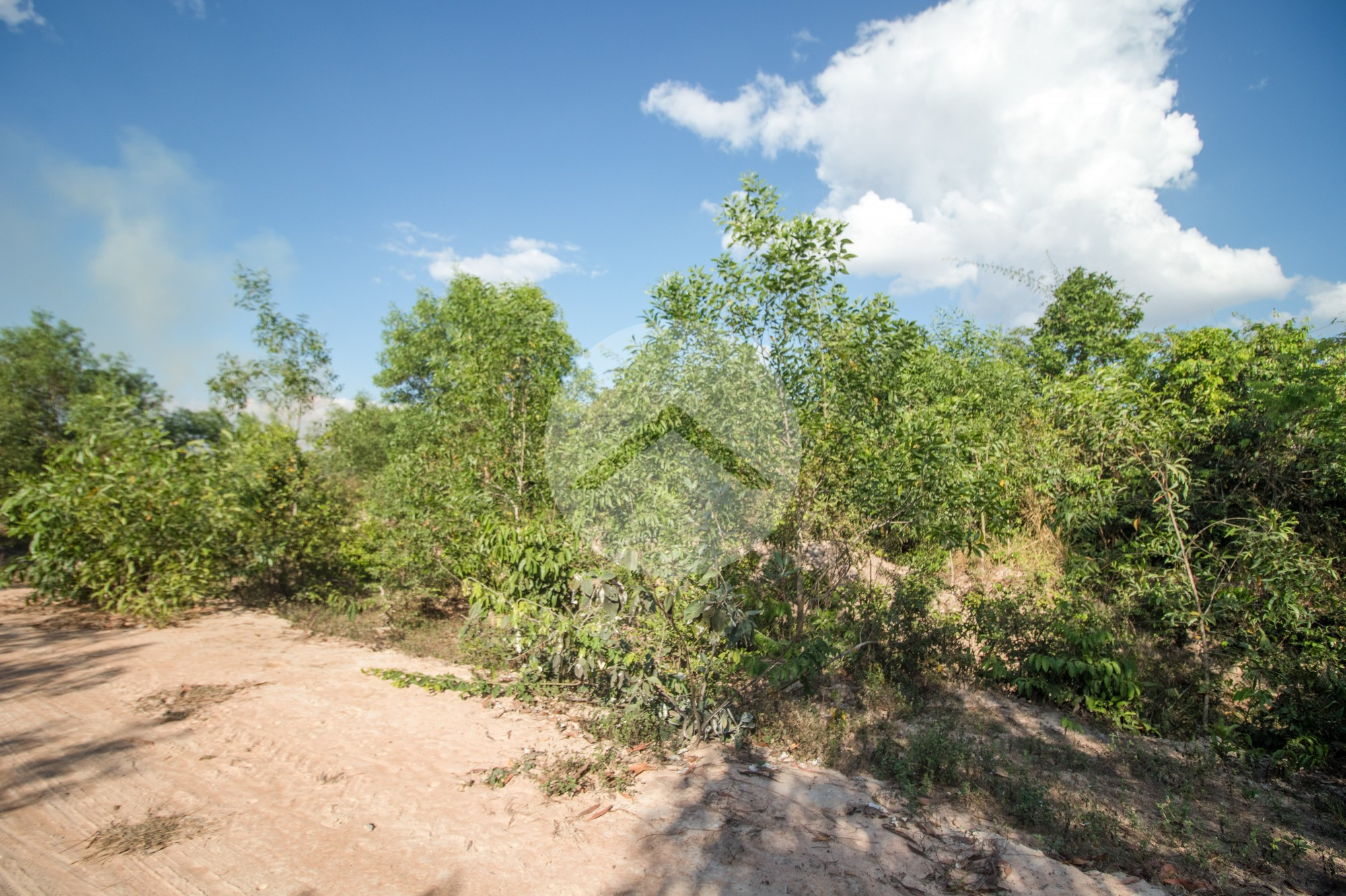 6.2 Hectare Land For Sale - Nokor Thum, Siem Reap