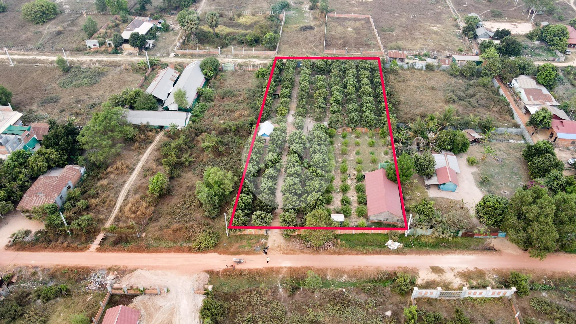 3200 Sqm Residential Land For Sale - Slor Kram, Siem Reap