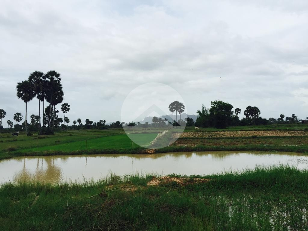 12 Hectare Agricultural Land For Sale - Trabeng 3, Kampot