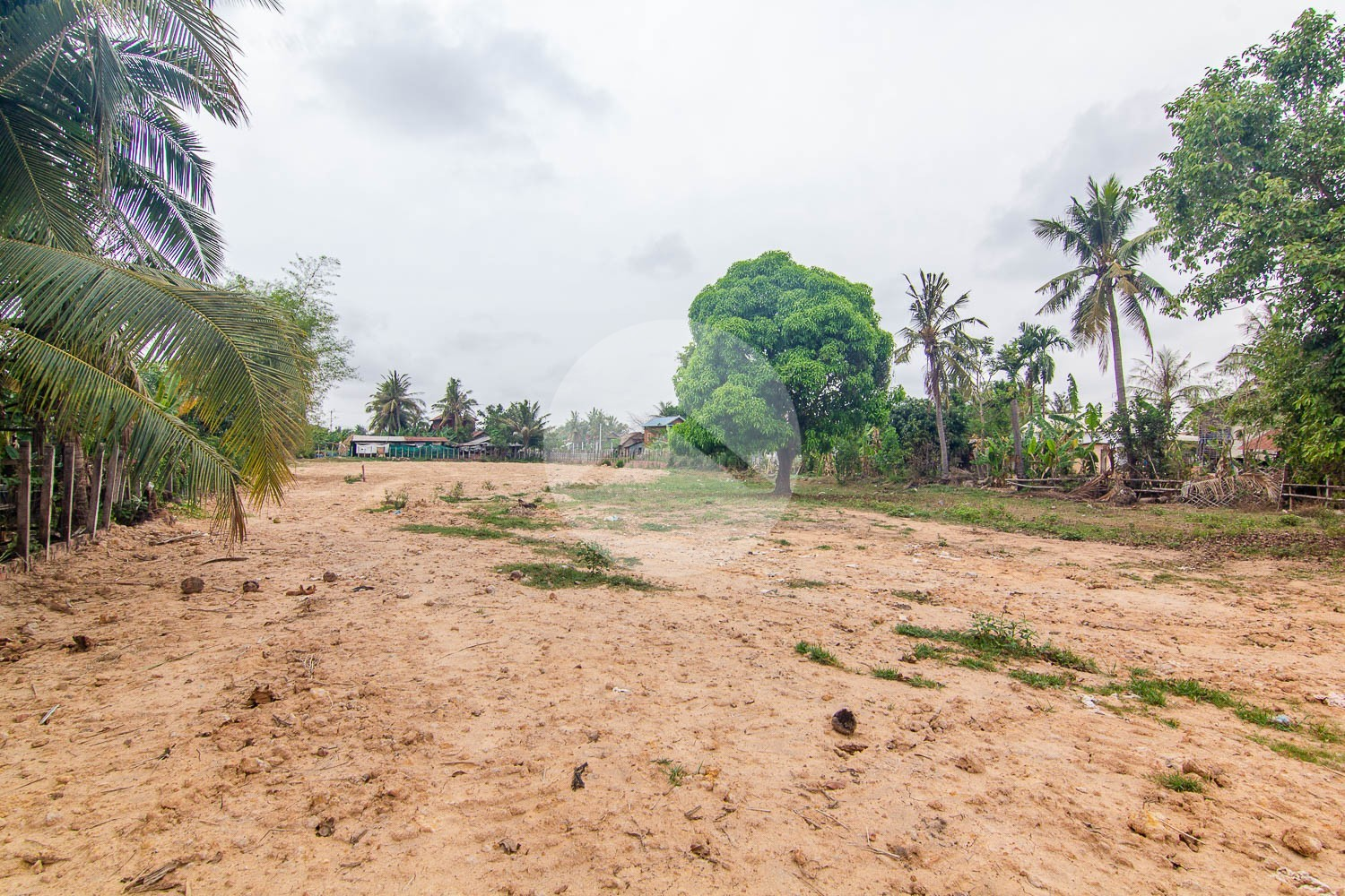 1560 Sqm Residential Land For Sale - Svay Dangkum, Siem Reap