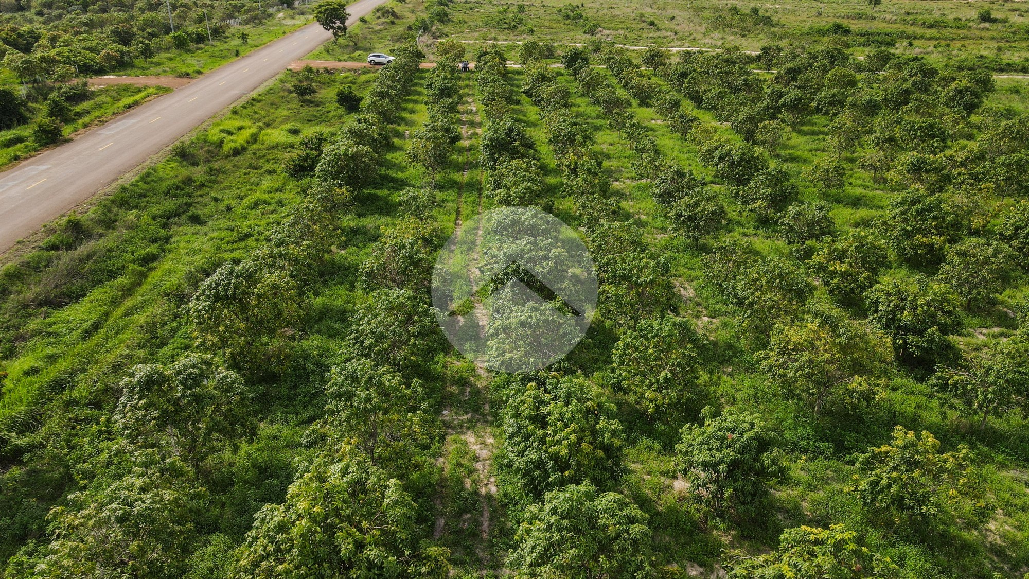 28 Hectare Land For Sale - Banteay Srei, Siem Reap