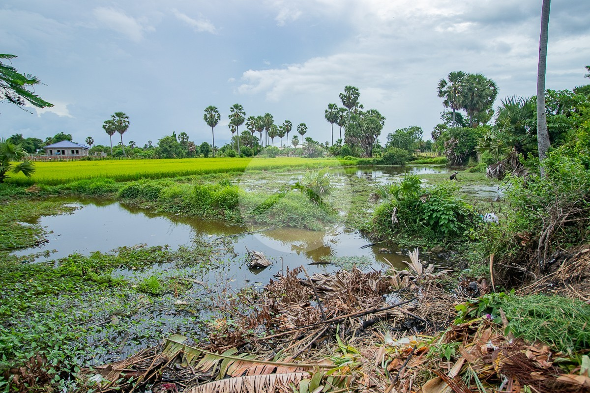 2321 Sqm Residential Land For Sale - Wat Athvear, Siem Reap